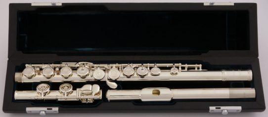 Azumi AZ1 Flute Model