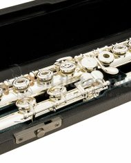 Altus A1107E C Foot Flute Model Keywork